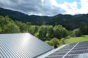 Photovoltaik mit Teichblick